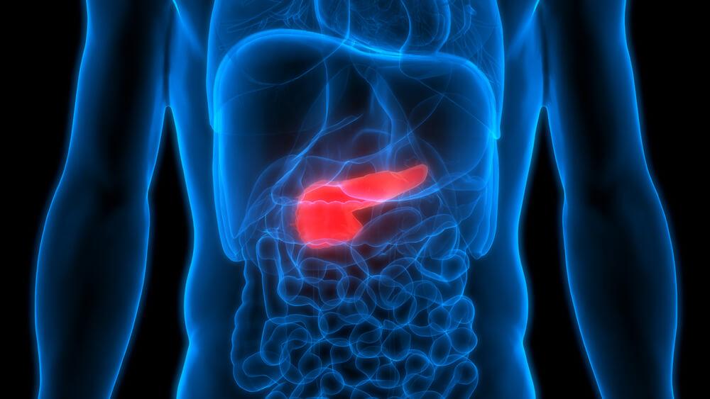 pankreatitis kod starijih Arija 2